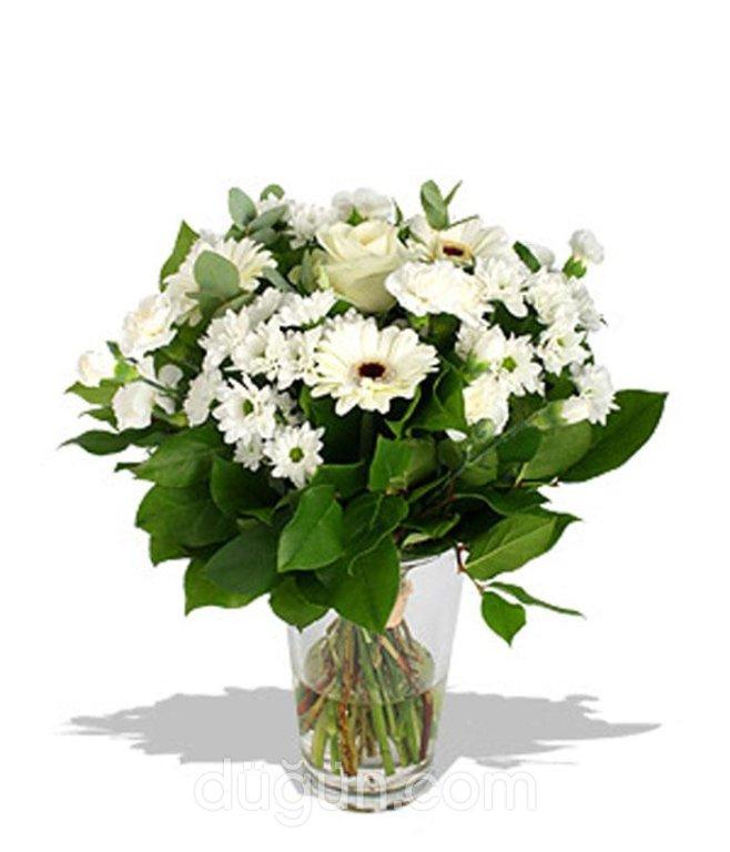Lily Çiçekçilik