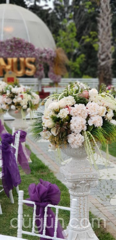 Balaban Kır Düğünü