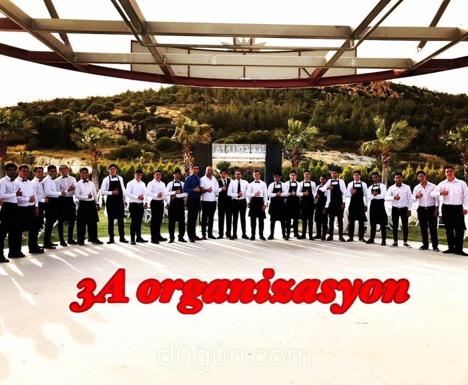 3 A Organizasyon