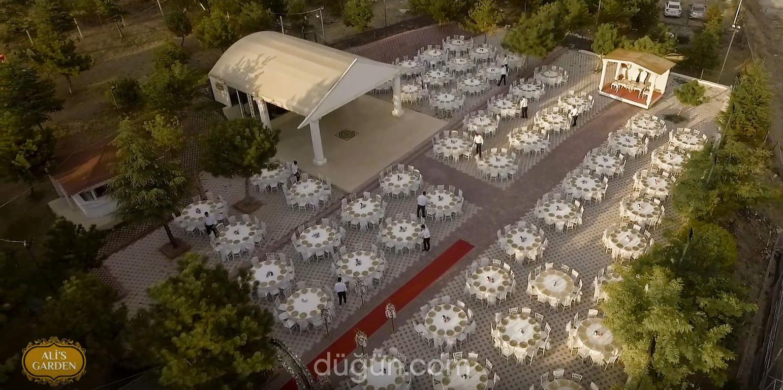Ali's Garden