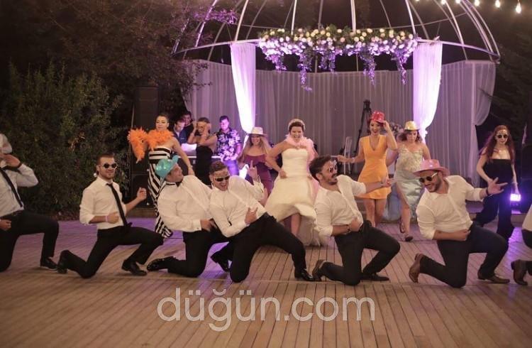 Tülin Motola Dance Company