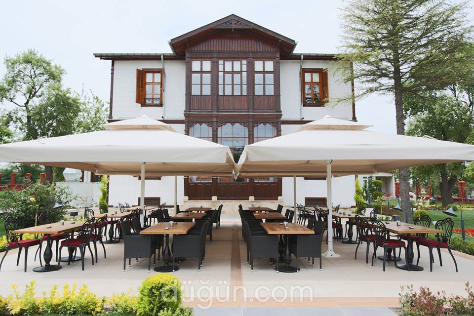 Tulipa Cafe & Restaurant