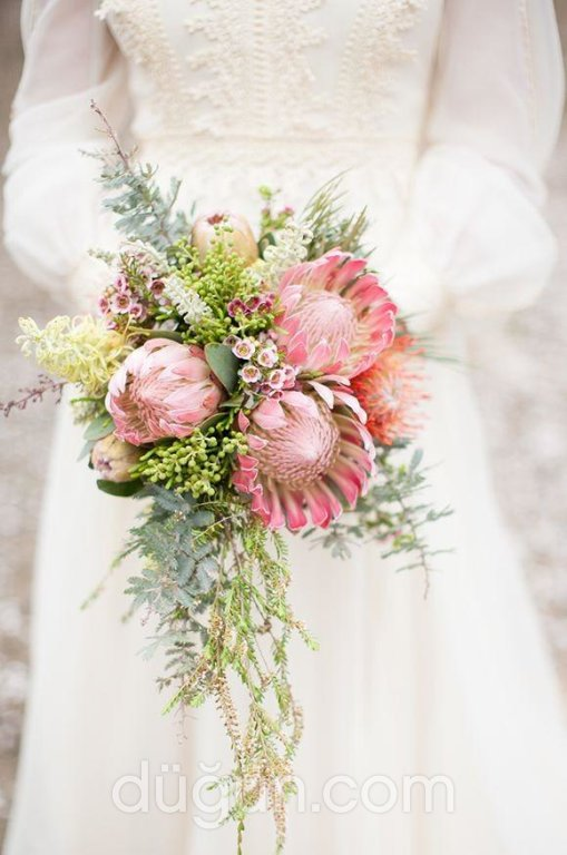 Tulip's Floral Design