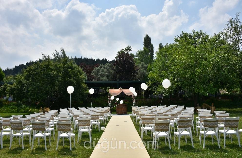 Haneden Kır Düğünü