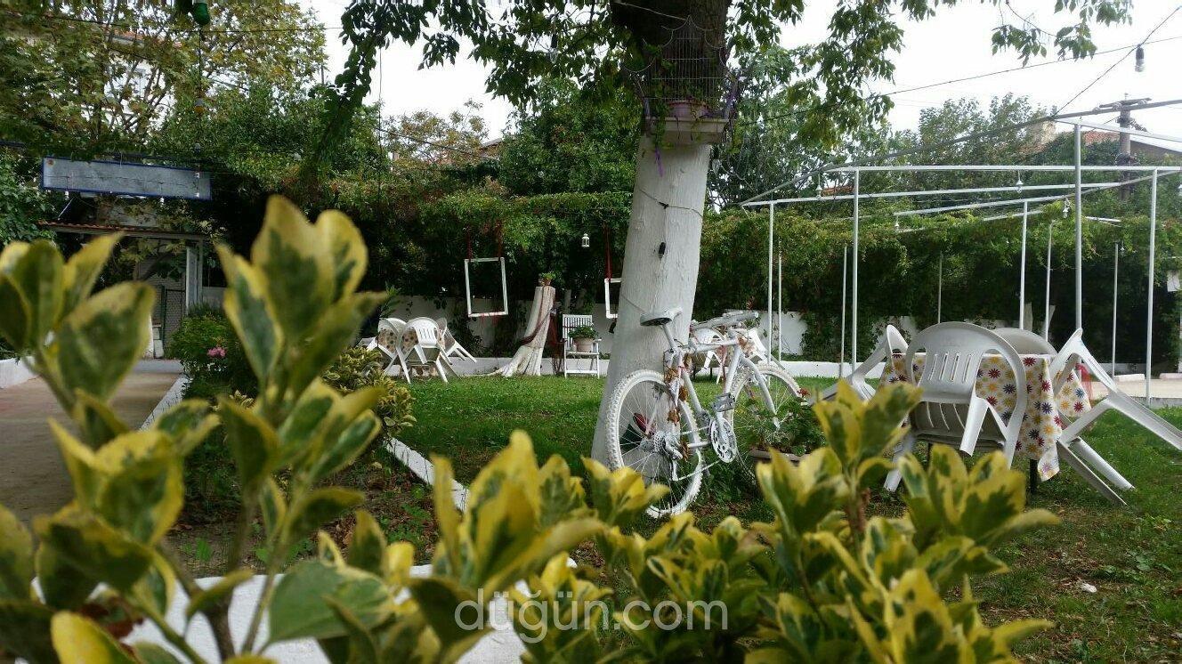 Sohbet Garden