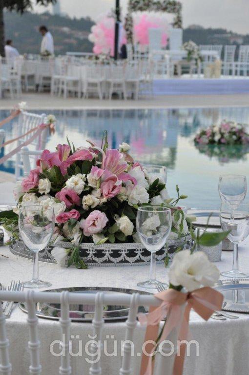 Pinta Wedding