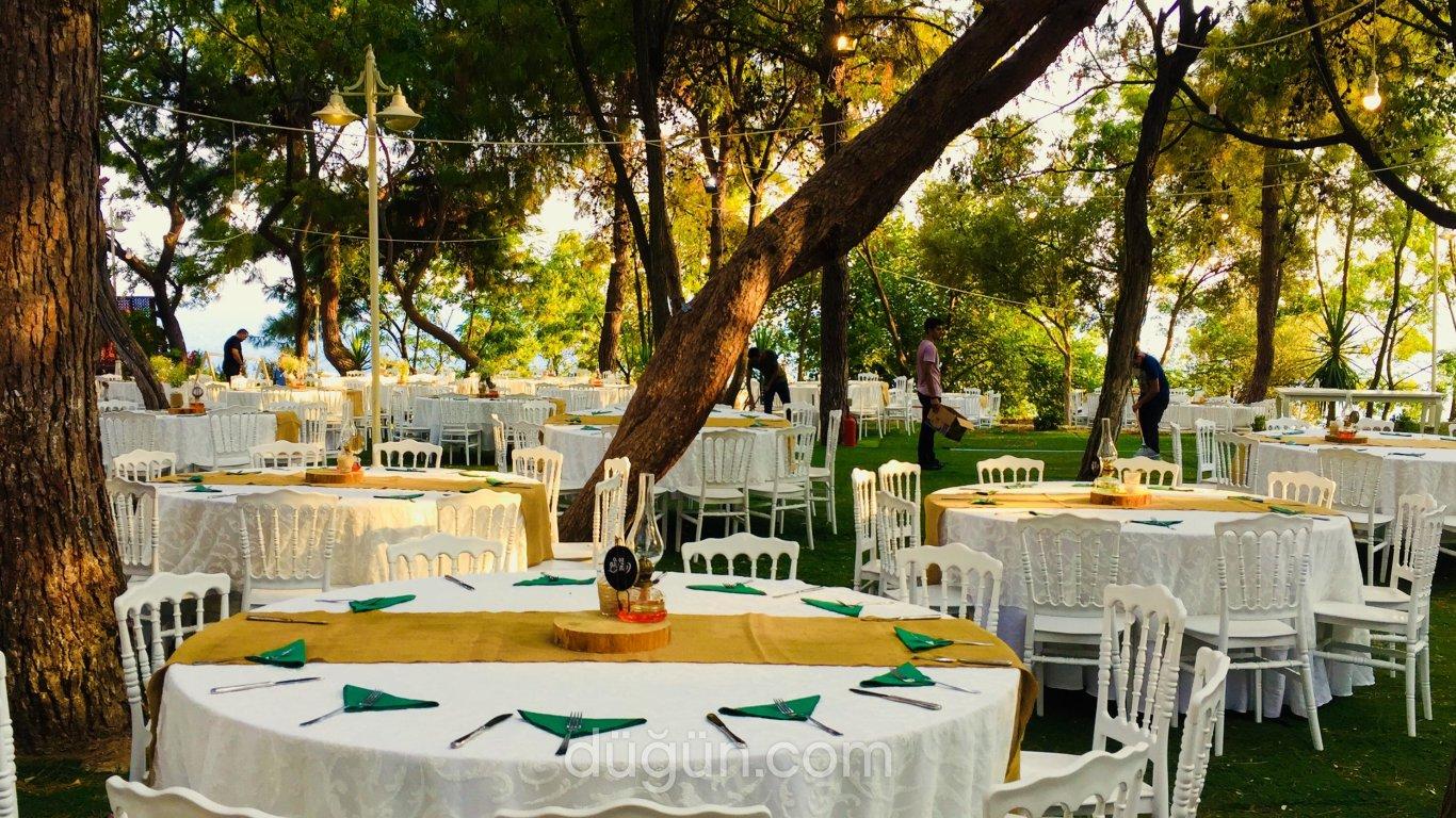 Varyant Wedding