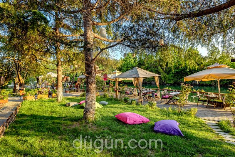 Park Mandalin