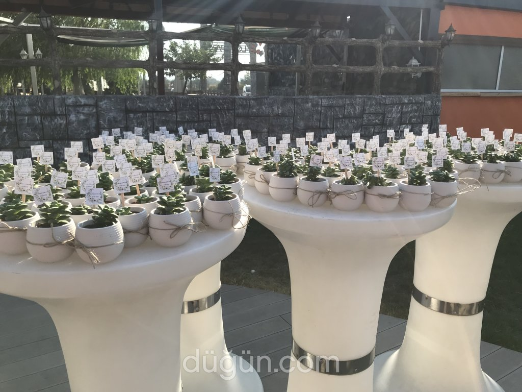 Selluka Bitki Butik