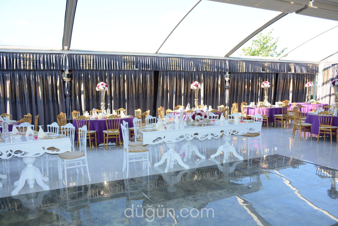 Wahal Event Wedding