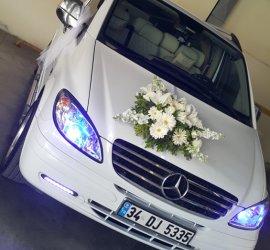 Vito Gelin Arabası