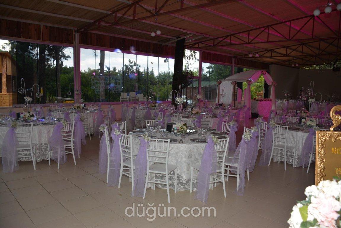 Arashan Kır Düğünü