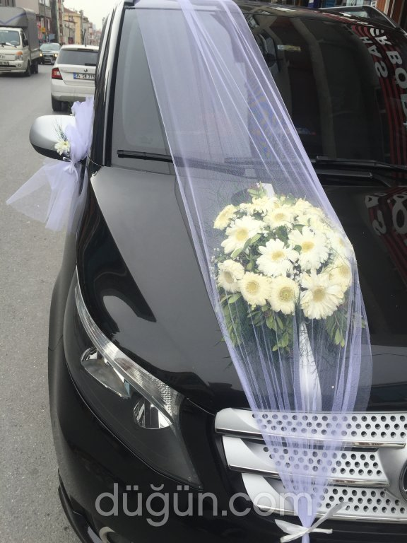 Aras Vip Gelin Arabası