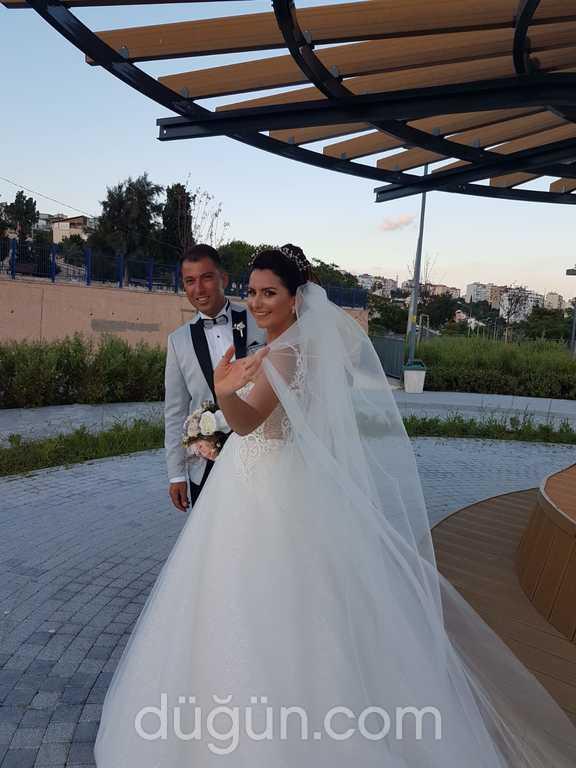 Gado Sposa