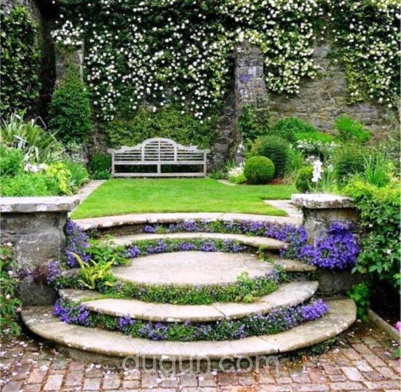 İbiza Garden