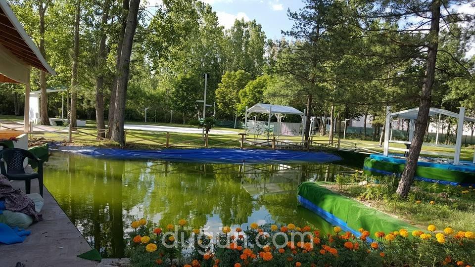 Green Nature Garden