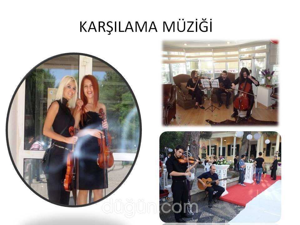 İzmir Organizasyon & Animasyon & Havai Fişek