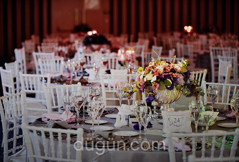 Septa Events&Design