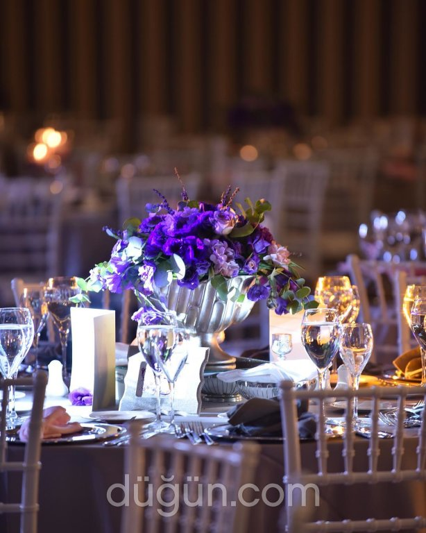 Septa Events&Design