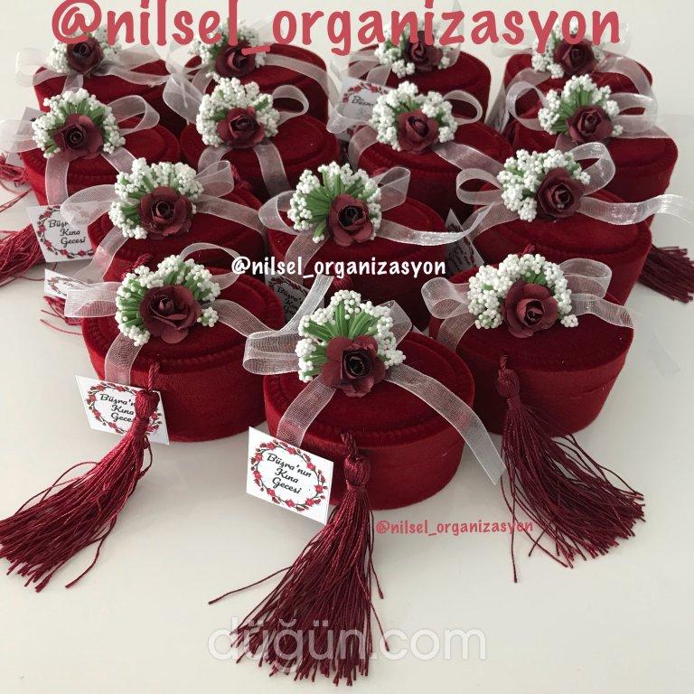 Nilsel Organizasyon