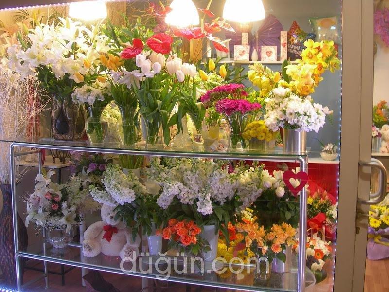 Green Çiçekçilik