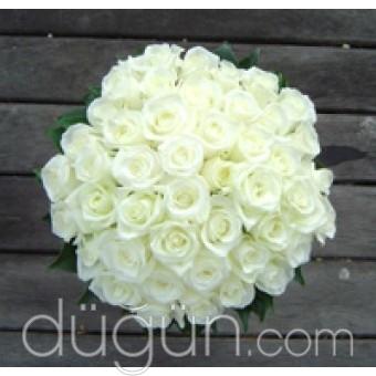 İncimiz Çiçekliği