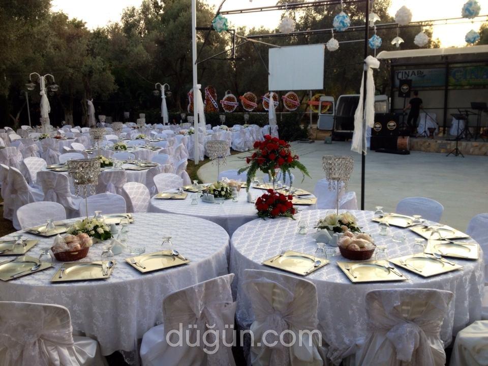 Çınar Kır Düğünü