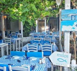 Milos Balık