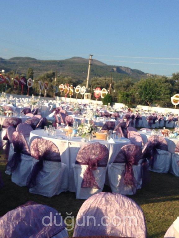 Çöllüoğlu Kır Düğünü