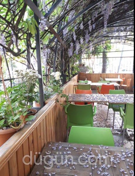 Orkide Cafe