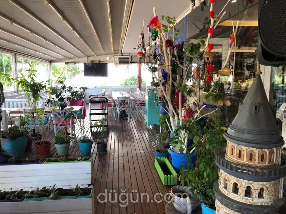 Begonville Cafe & Food