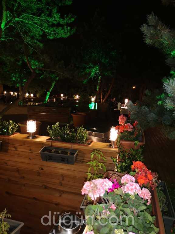 Testi Garden