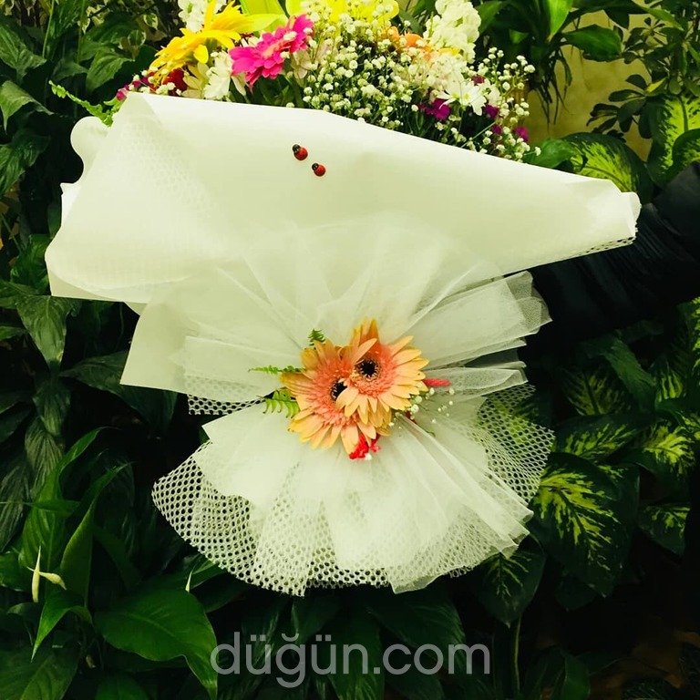 Lara Çiçek