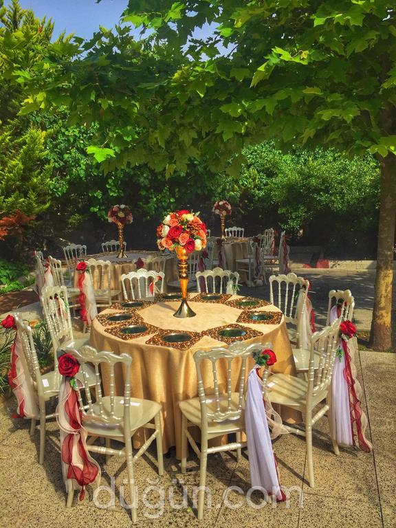 Haylayf Düğün Davet Organizasyon
