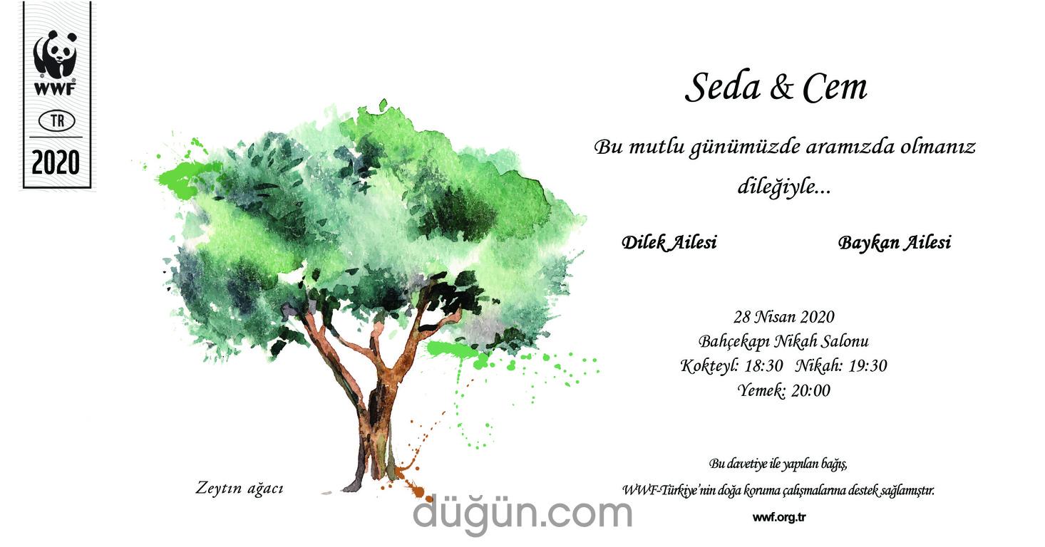 Doğal Hayatı Koruma Vakfı (WWF Türkiye)