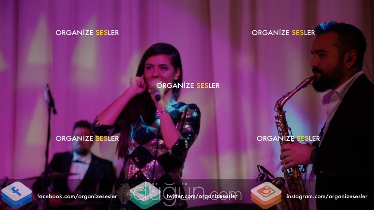 Organize Sesler