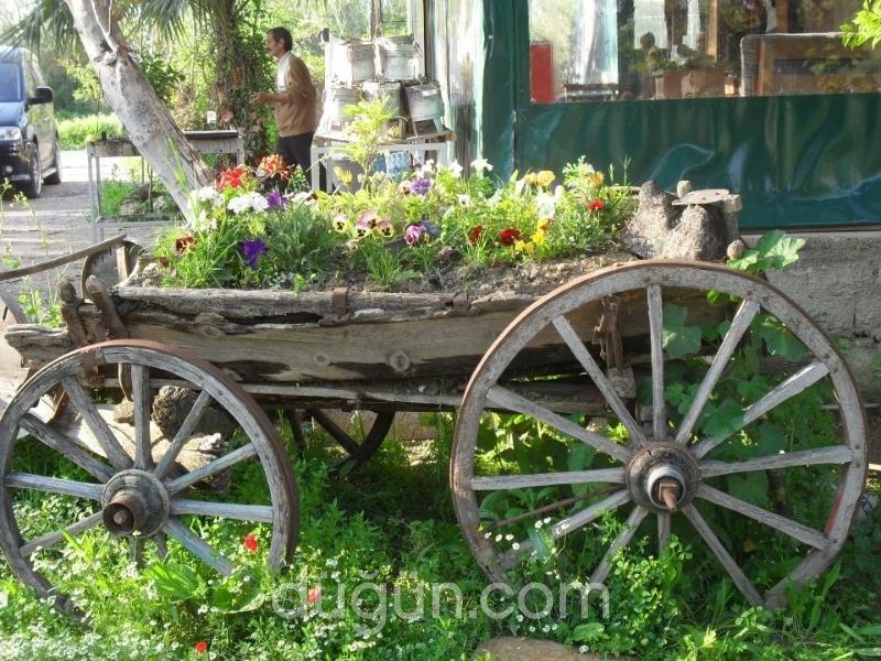 Sevgi Çiftliği