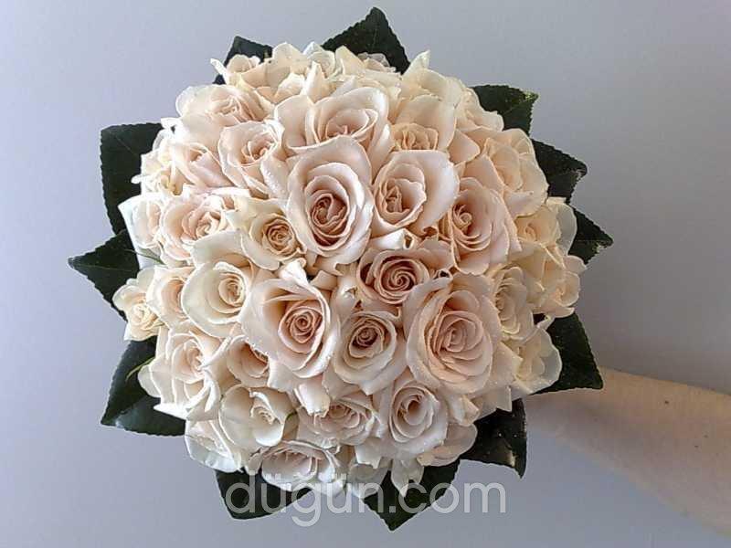 Kübra Çiçek