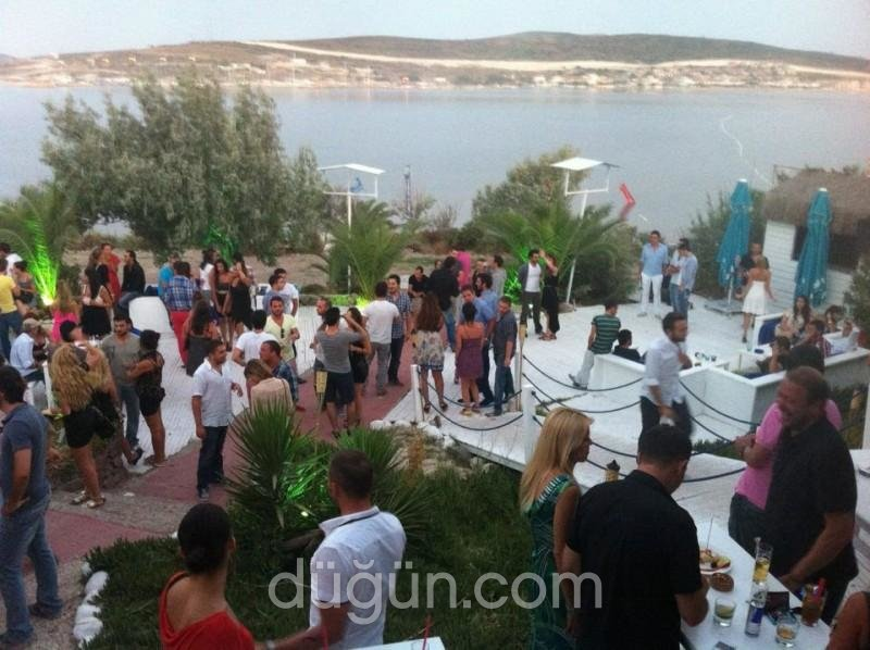 Mood Clup & Events