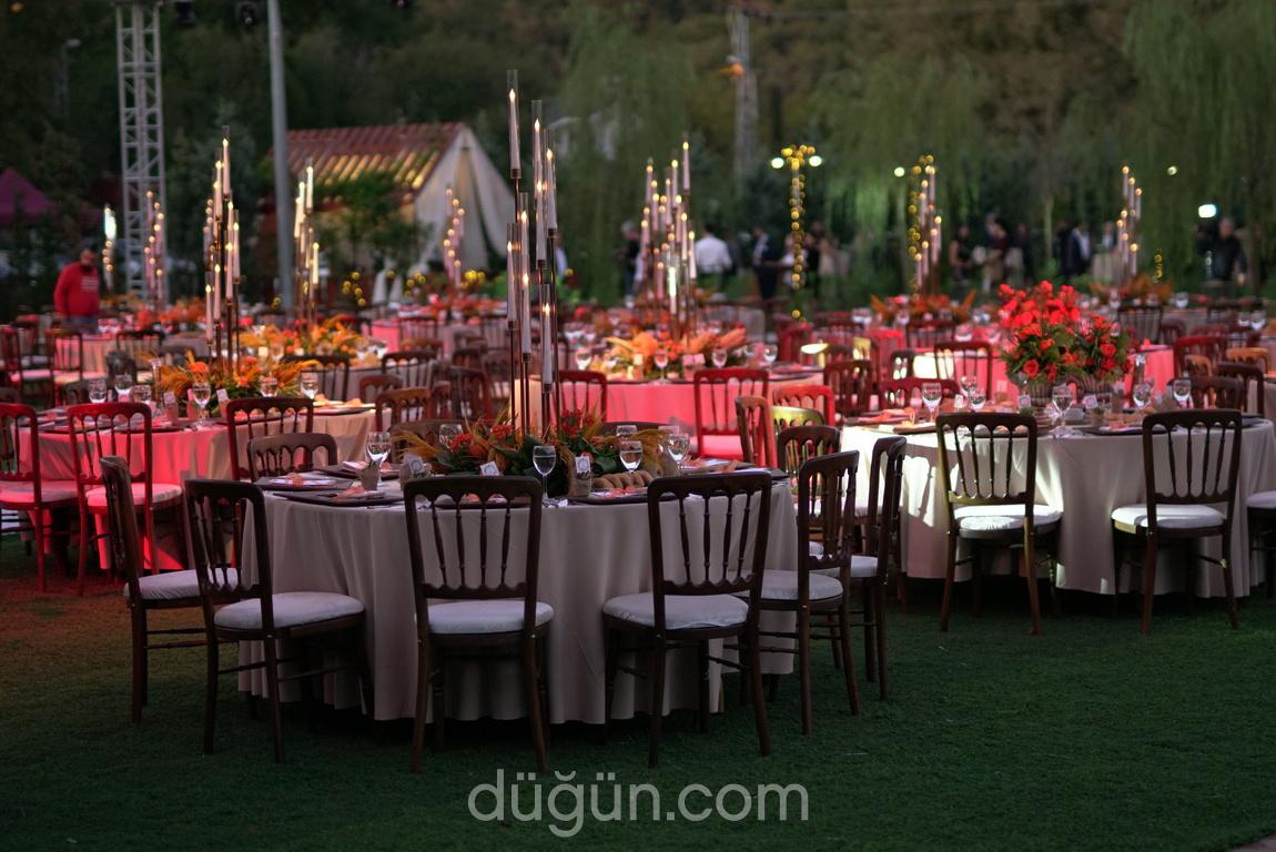 Farbe Wedding Decor