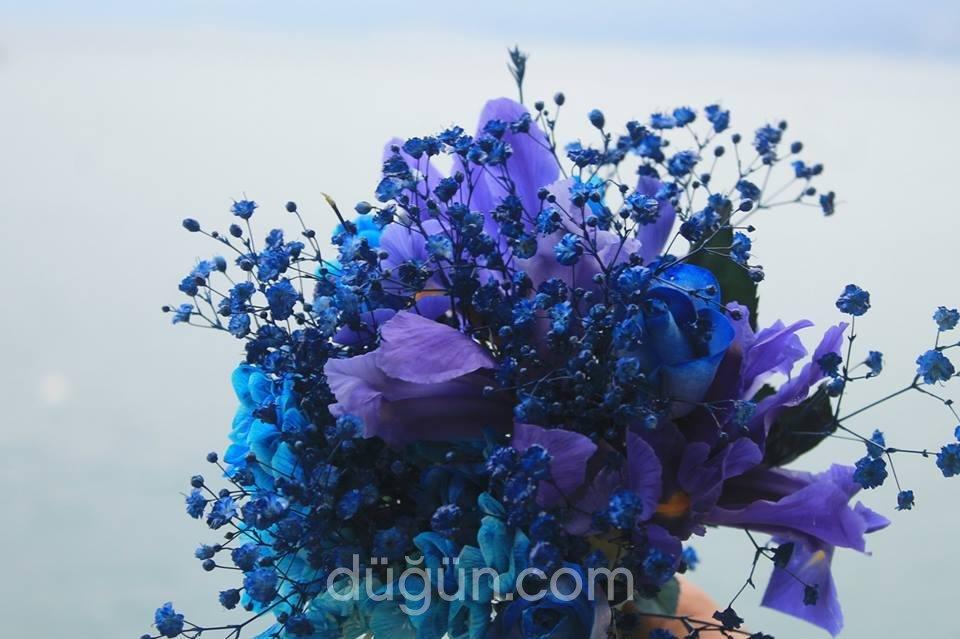 Kral Çiçek