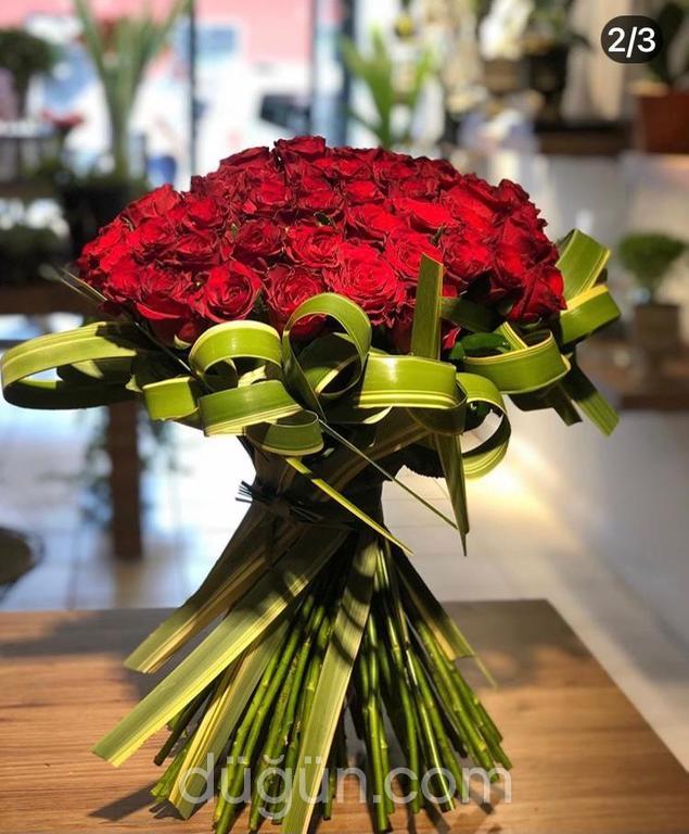 T Sinan Flowers