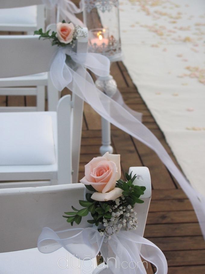 Nilyum Events & Wedding Design