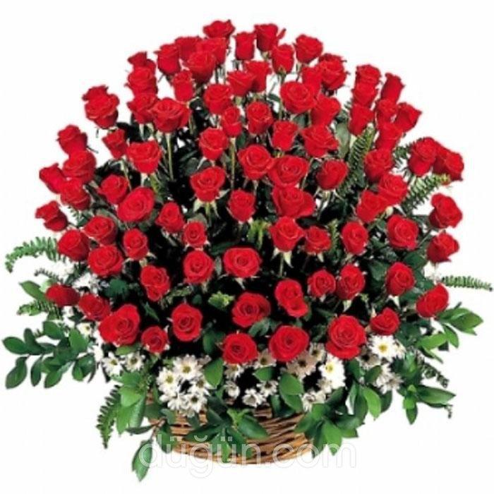 Papatya Çiçekçilik