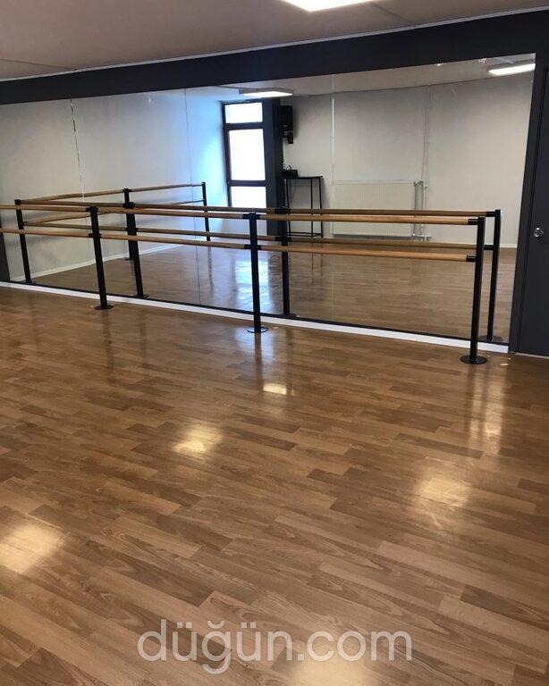 Güney Gümüş Dans ve Sanat Okulu