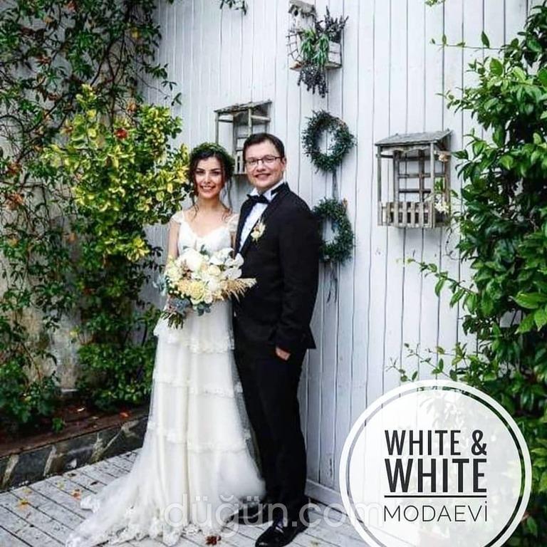 White & White Modaevi