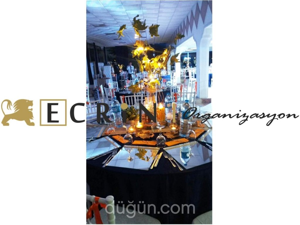 Ecrin Organizasyon