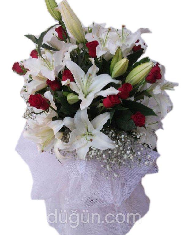 Mevlana Çiçek Ve Organizasyon