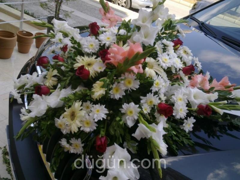 Menekşe Çiçekçilik