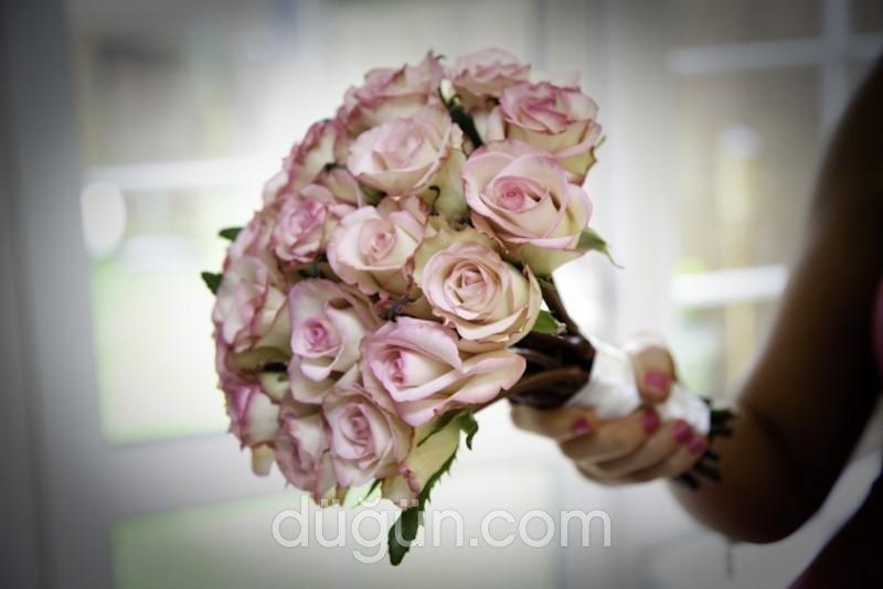 Gardencity Flowers